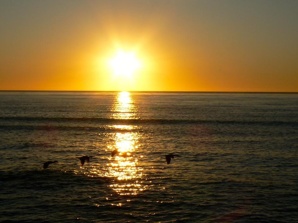 San Diego w. van Gerwens 10.30.09 001 (159)